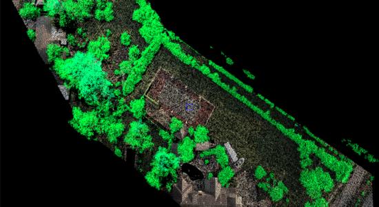 Insight-Vegetation